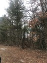 87+/- Acres 2 Tracts on Route 92