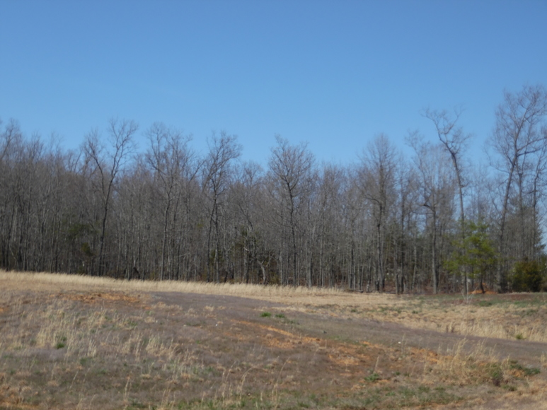 Featured Image for 1.28 +/- Acres of Commercial Property in Culpeper County, VA--Selling to the Highest Bidder!!