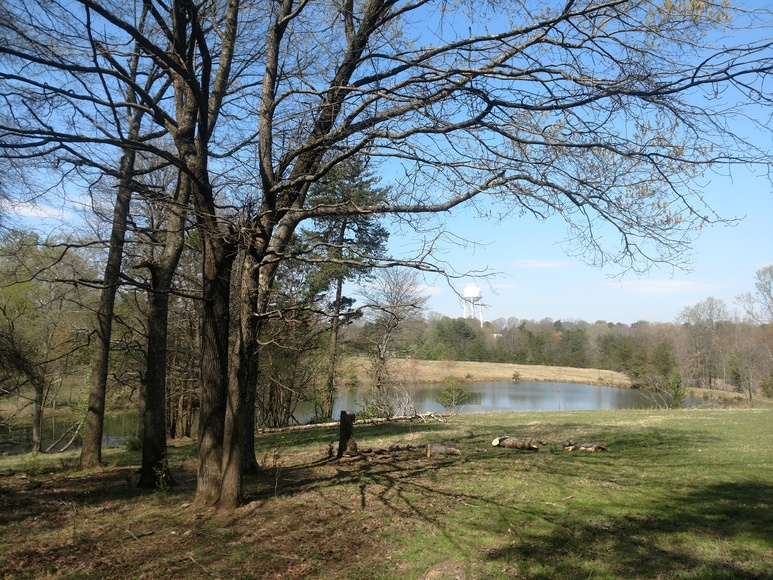 23+/- Acres in King, NC