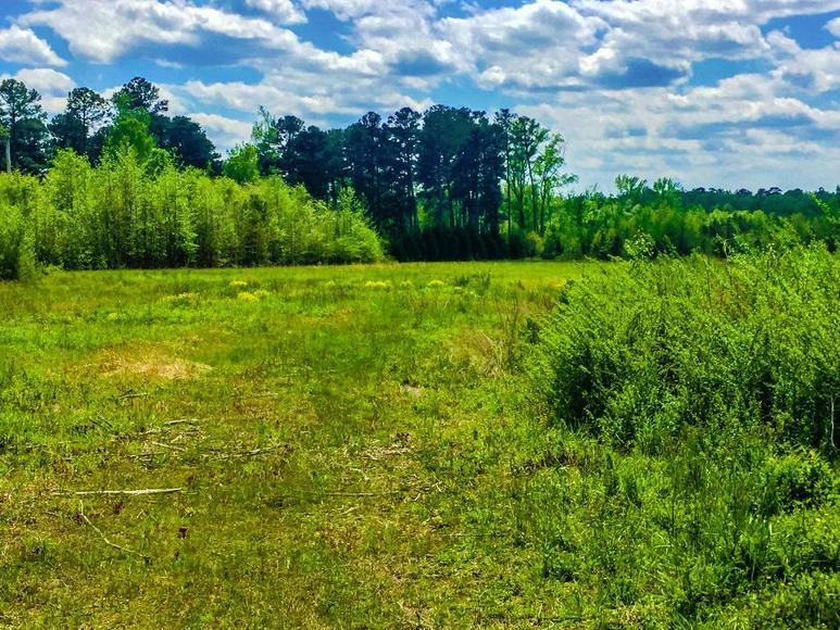 Image for Roanoke Rapids NC Properties