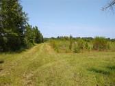 114 Acres - Williamsburg County SC