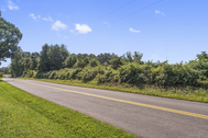 SOLD - 31.80 Acre Residential Land in Culpeper, Virginia