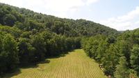 101 Acres in Renick, WV - Prestine Farmland