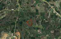 30± Wooded Acres for Sale in Dora, AL