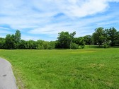 4.4+/- Acres adjoining 119 & 123 Martindale
