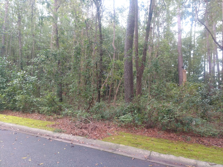 North Carolina Real Estate Auction