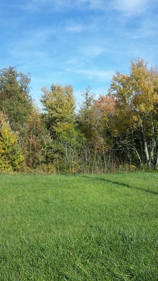 Image for 2.8000 Acres in Campbell County, VA