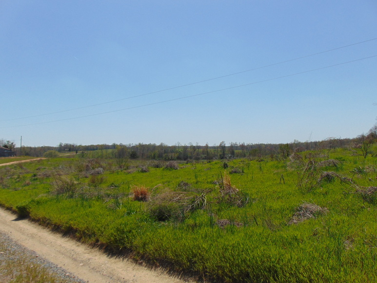 10 DAY UPSET PERIOD IN EFFECT/ 40.556+/- Acres of Cropland w/ House