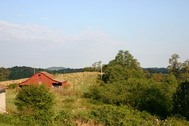 45+/- Acres offered in 8 tracts - Fancy Gap, VA