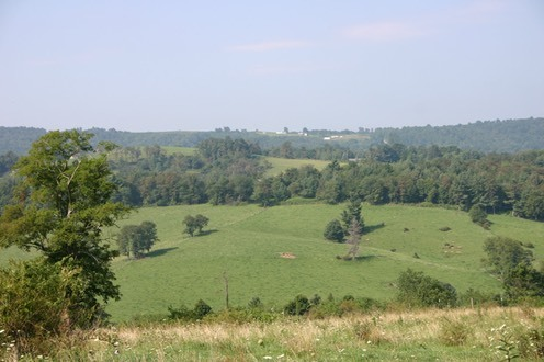 60+/- Acres offered in 11 tracts, ranging from 3.4 +/- acres to 9.5+/- acres - Fancy Gap, VA