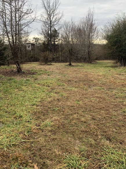 Image for Land Auction (Nathalie, VA)