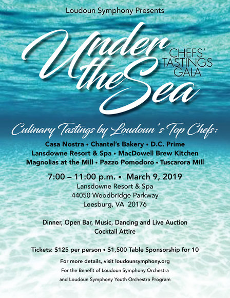 Loudoun Symphony Orchestra Under The Sea Gala