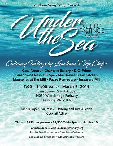 Loudoun Symphony Orchestra Under The Sea Gala