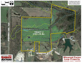 Tract 3: 161± acres, Tractor Sheds, Workshop & Cattle Barn