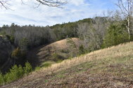 Lot #19 - 25.21± Acres Selling to the Highest Bidder