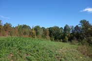 245.75 Acres - Lancaster County