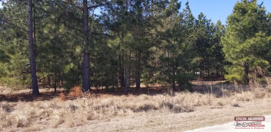 Acreage and Land Tracts in Montgomery County, NC