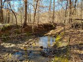110 ACRES - LAURENS COUNTY, SC