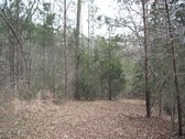 95 ACRES - CHEROKEE COUNTY, SC