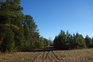 103 ACRES - CHESTER COUNTY