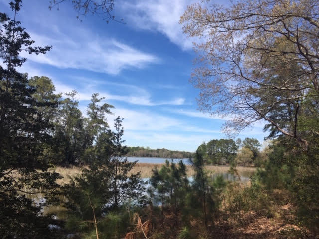 Image for Bank-Owned Waterfront Home - 2 Beds, 2 Baths, 1,921 SF - 192 Flagstaff Rd., Lancaster, VA