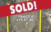 Tract 6 15± acres