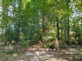 228.53 ACRES - KERSHAW COUNTY, SC