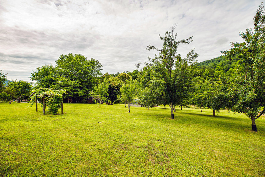 Image for 4 BR/3 BA Home w/Finished Walk-Out Basement & Stunning Mountain Views on 2 +/- Acres