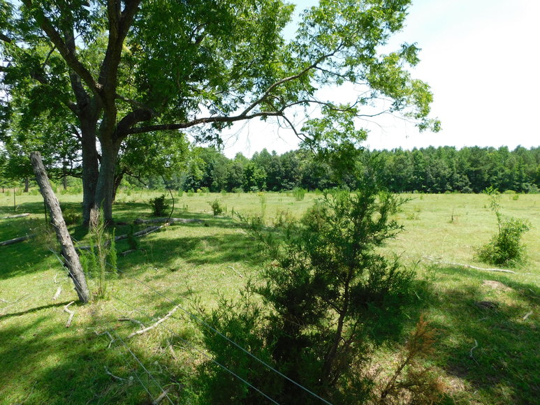 66+/- Acres w/ Home Located in Sanford, NC
