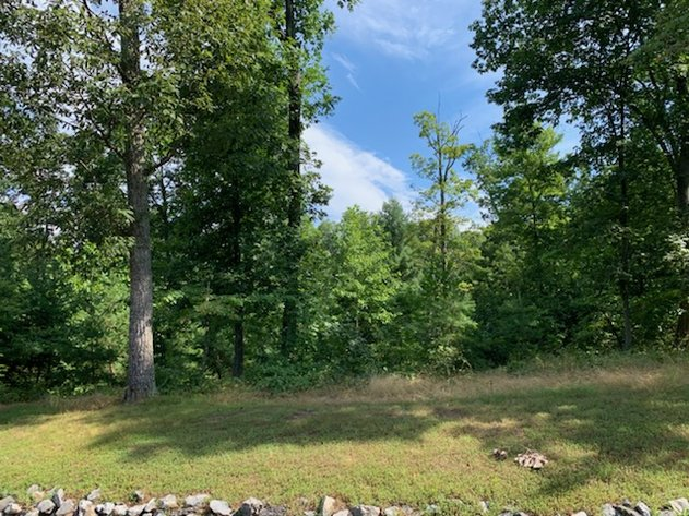 Online Only Auction!  2.61 Acres of Land!  Fairview Oaks Berkeley Springs WV!