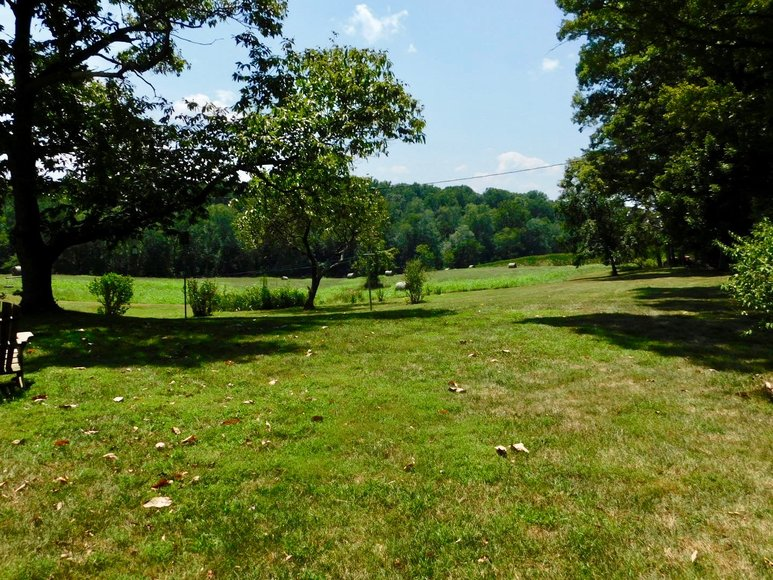 Image for 9.8 +/- Acres of Undeveloped Land in Madison County, VA