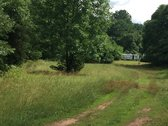 FOR SALE - $75,000 - 11.48 Acre Residential Parcel in Madison County, Virginia