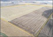 SALE PENDING - Parcel 1 - Marshall Co., IL - 124.99 Ac. m/l (130-0058-01)