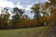 Shoal Creek Farm
