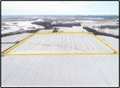 SALE PENDING - Parcel 2- Louisa Co., IA- 40.00 Ac., m/l, (180-0037-02)