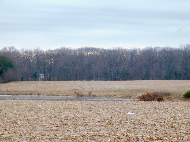 Image for 28.6 +/- Acres of Open Land w/Barn & Pond and Up to 3 Division Rights--Fauquier County, VA