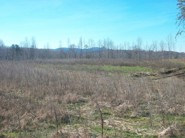 Image for ABSOLUTE TRUSTEE AUCTION: 310± AC in 3 Tracts (Penhook, VA)