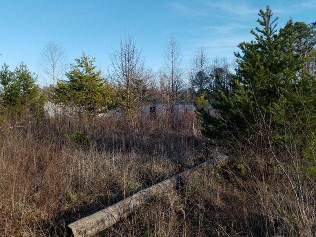 Property #13 - 3.29± acres near Dan Valley Farm Road