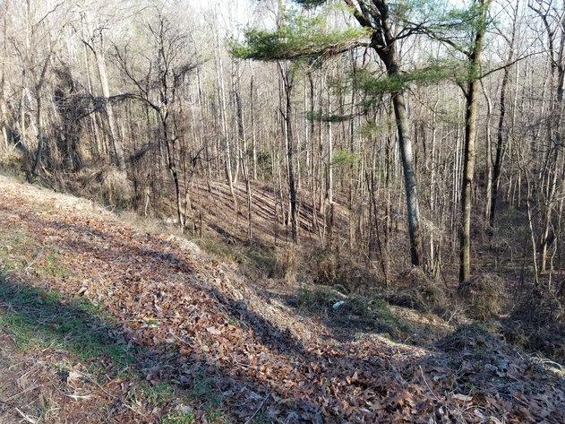Property #15 - 4.8059± acres off Hatchers Chapel Road