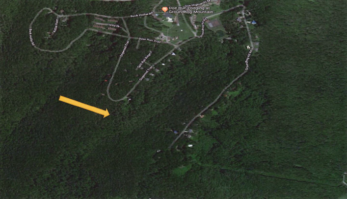 Property #14 - 55.0± acres on Groundhog Hill Rd
