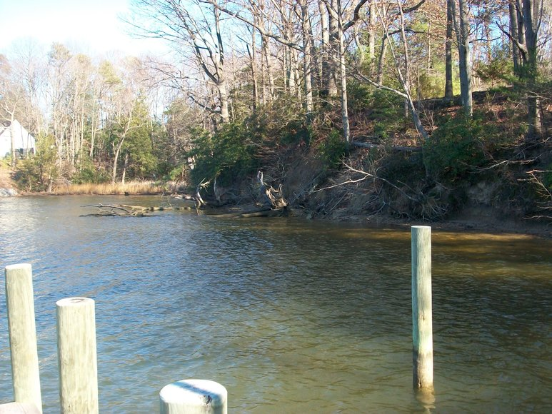 Image for REAL ESTATE AUCTION: 4 Waterfront Tracts (Callao, VA)