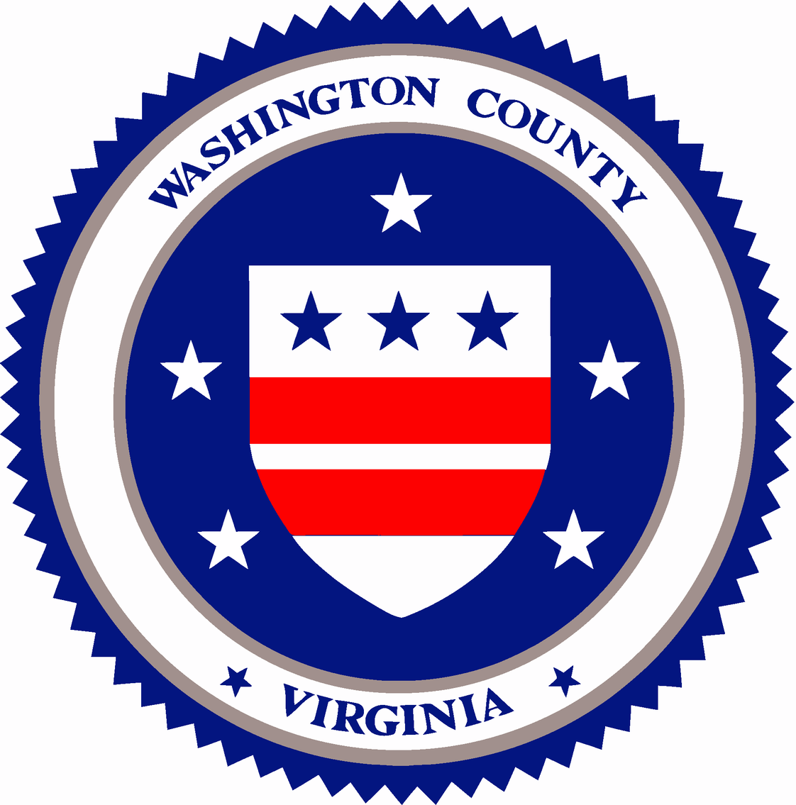 Image for TACS PUBLIC AUCTION: Washington County, VA