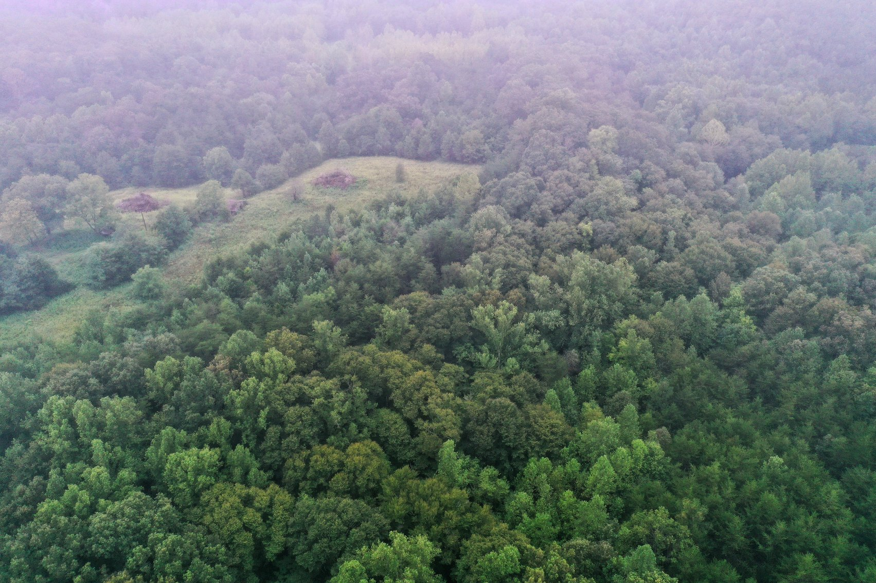 Image for Tract 2:  105.5 +/- acres