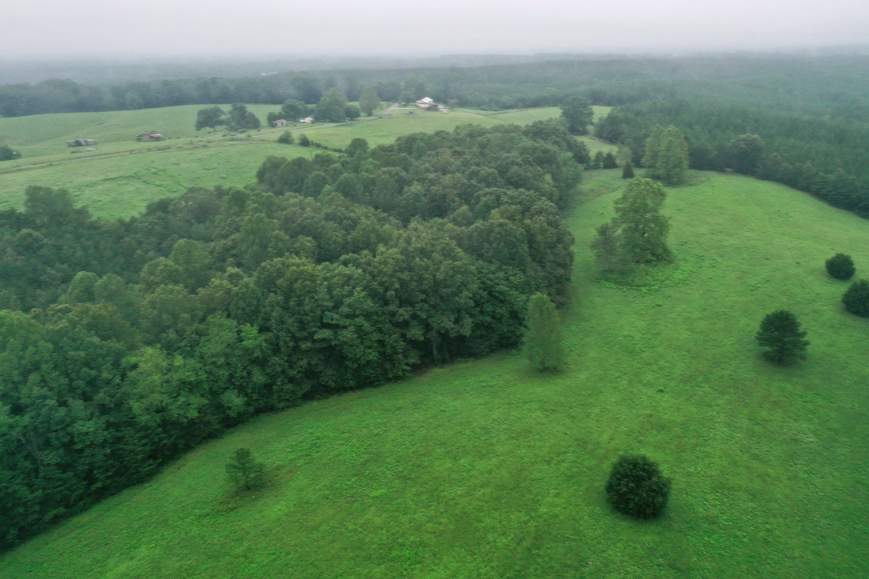 Image for Tract 3:  71 +/- acres