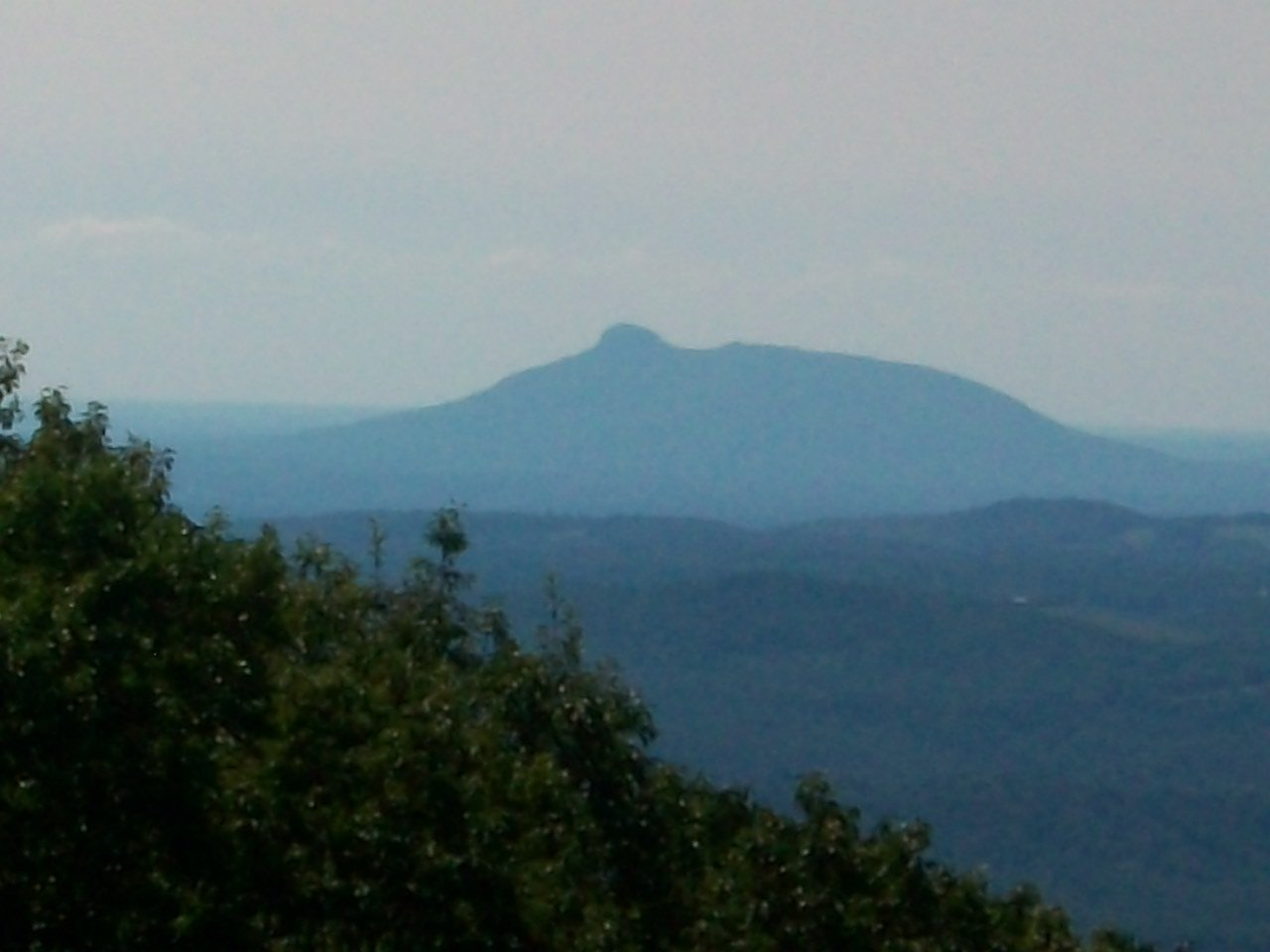 Image for REAL ESTATE AUCTION: 132± Acres in 2 Tracts (Hillsville, VA)