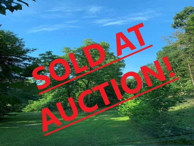 Online Only Auction of 20.00 Acres
