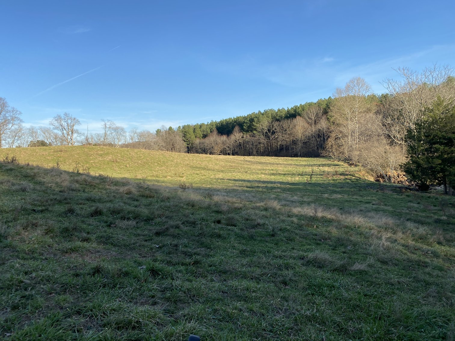 Image for 25.13 +/- Acres w/Creek on Property & 350' +/- of Road Frontage in Madison County, VA--SELLING to the HIGHEST BIDDER!!