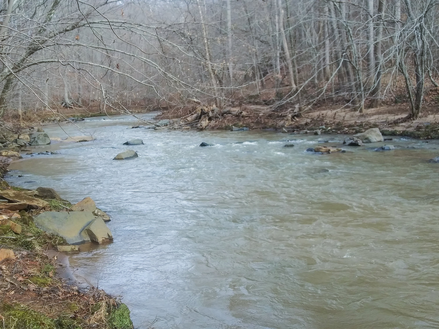 Image for REAL ESTATE AUCTION: River Road, Amherst, VA