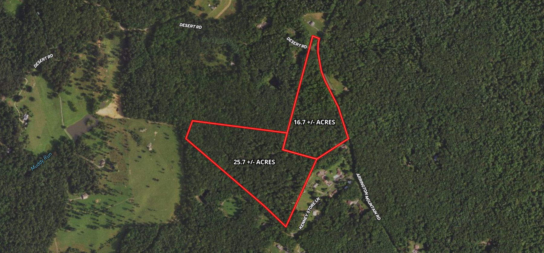 Image for 16.7 +/- and 25.7 +/- Acres of Wooded Land in Madison County, VA--SELLS to the HIGHEST BIDDER!!