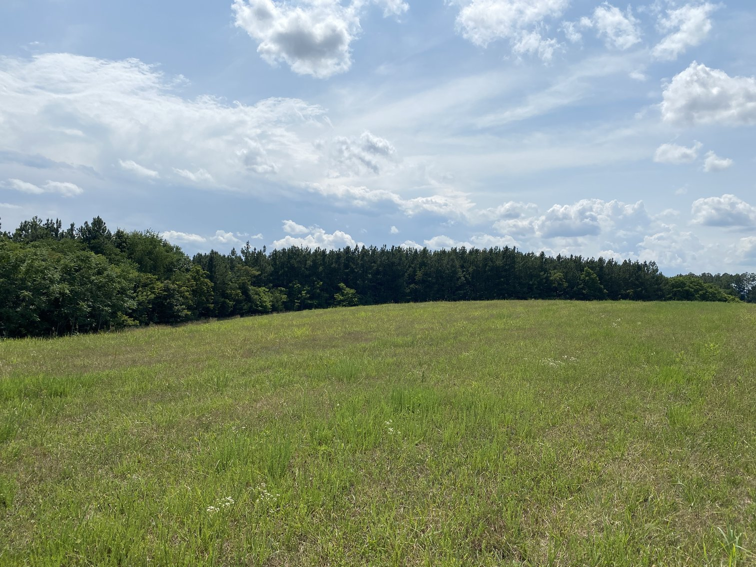 Image for Parcel 1 (9.59+/- acres) of 5 Individual Land Parcels Totaling 77.9 +/- Acres in Franklin County, VA, Only 10 Miles from Smith Mountain Lake--ONLINE ONLY BIDDING!!